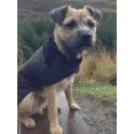 barbour dog jumper